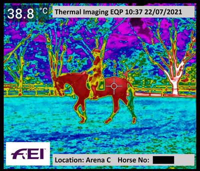 Example of monitoring horses in work using thermal imaging cameras at the Tokyo 2020 Olympic Games. © FEI. (PRNewsfoto/FEI)